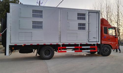 猪仔等畜禽运输采用高科技管理运输------东风畜